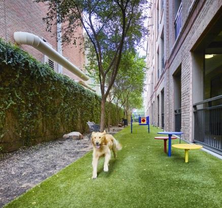 Apartments for rent in houston tx camden plaza - Garden park apartments greenville tx ...